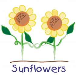 Sunflowers Childcare